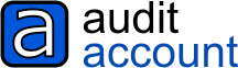 Audit Account Software